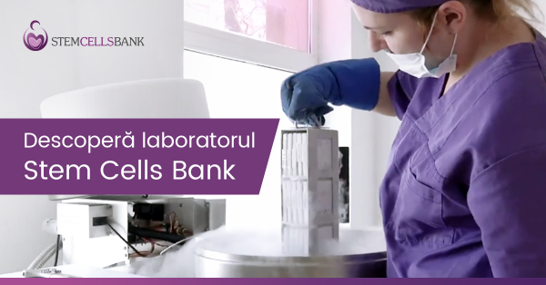 Stem-Cells-Bank-Laborator